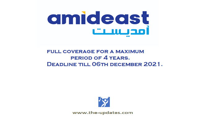 Tomorrow's Leaders Undergraduate Program at AMIDEAST in MENA